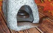 Африканская домовая змея,  удивительный вид змеи,  самки от 35 см